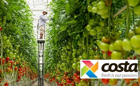 Maser install Digital Lumens LED lighting & new SiteWorx platform into Costa Group's NSW warehouse
